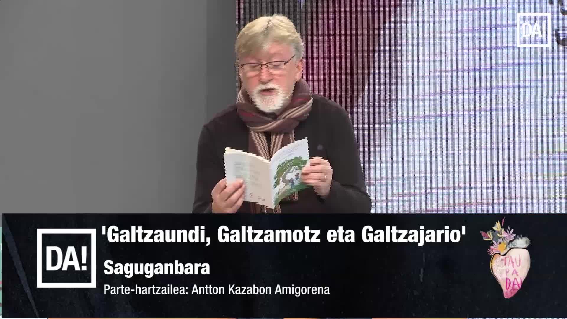 Galtzaundi, Galtzamotz eta Galtzajario